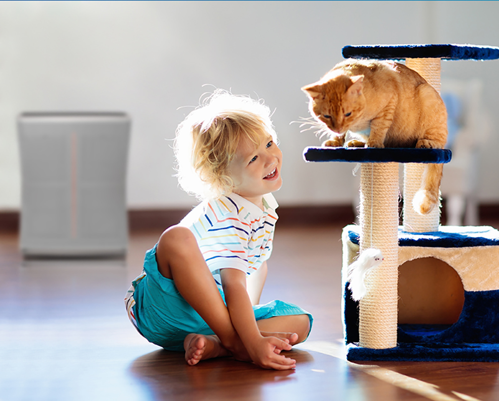 anak bermain dengan hewan peliharaan dekat dengan Stadler Form Roger